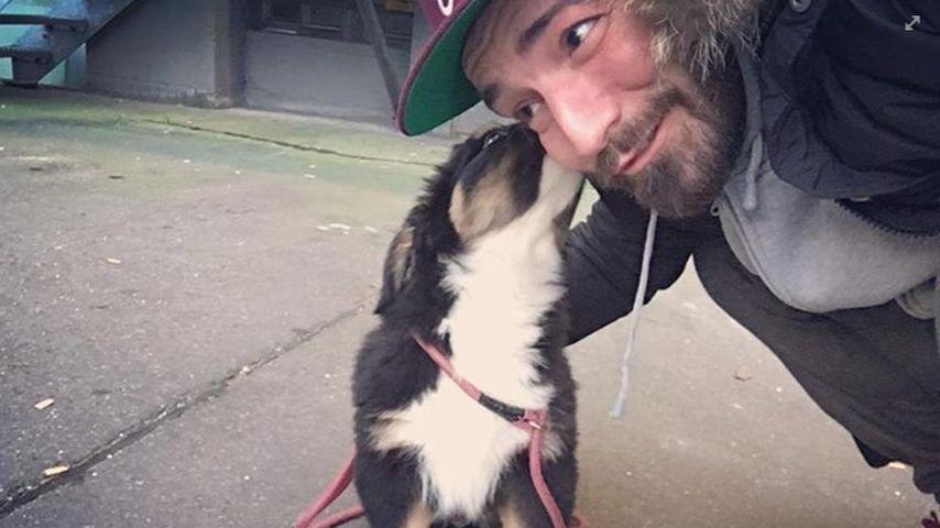 """""""Tag des Hundes"""": 3 knuddelige Momente von Jan Leyks Bruno"""