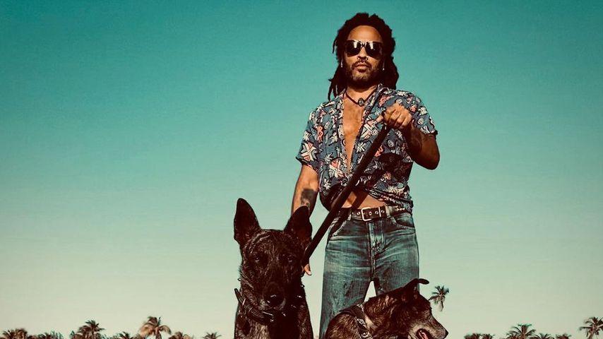 Lenny Kravitz mit seinen Hunden im November 2020