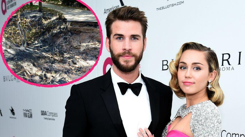 Tragisch: Video zeigt Überreste von Mileys & Liams Haus