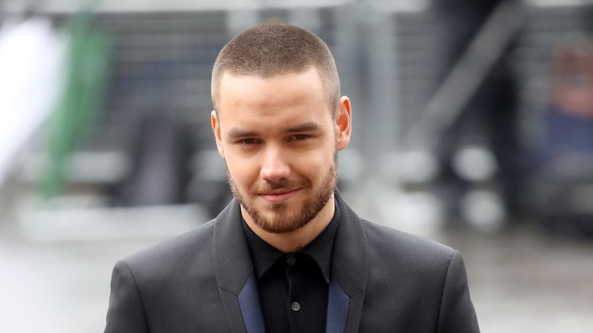Liam Payne, Sänger