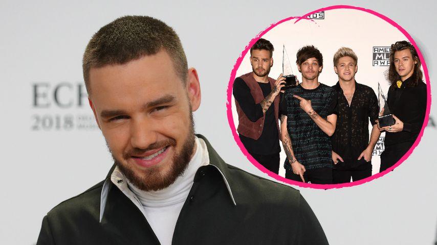 Liam Payne verrät: Sind die One Direction-Boys noch Freunde?
