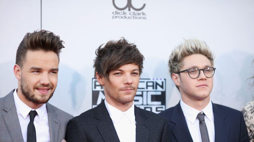 Liam Payne, Louis Tomlinson und Niall Horan im Jahr 2015