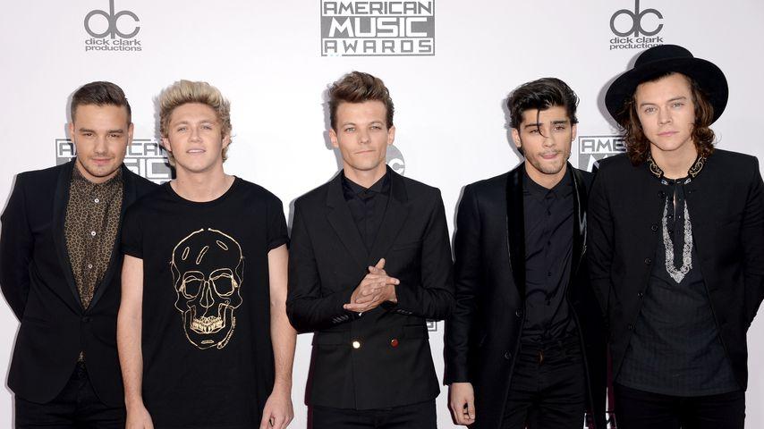 Liam Payne, Niall Horan, Louis Tomlinson, Zayn Malik und Harry Styles bei den American Music Awards