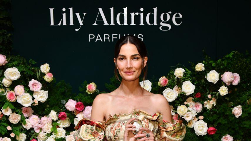 Lily Aldridge, Model