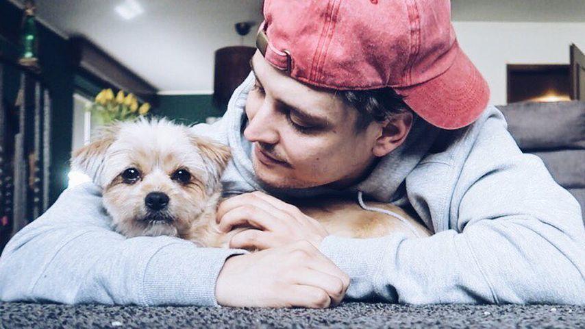 Angst um seinen Hund: Dagis Ex LionT in Tränen aufgelöst!