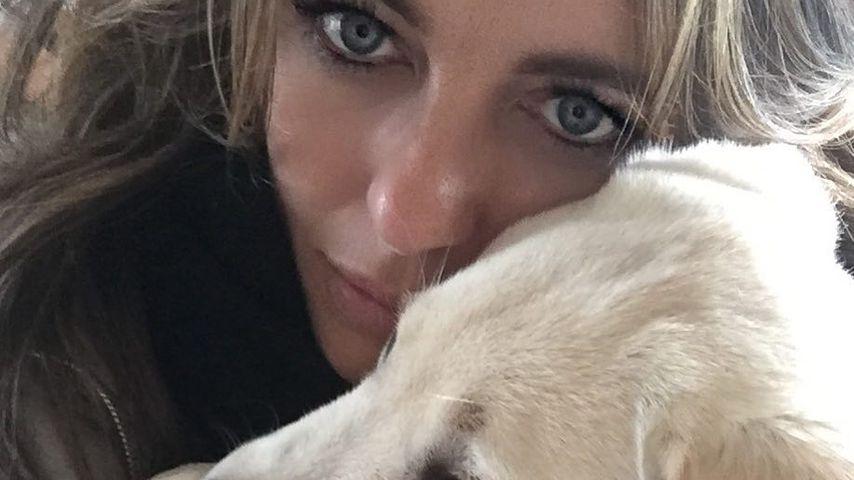 Liz Hurley bekommt 2.000 Dollar Schadensersatz für Hund
