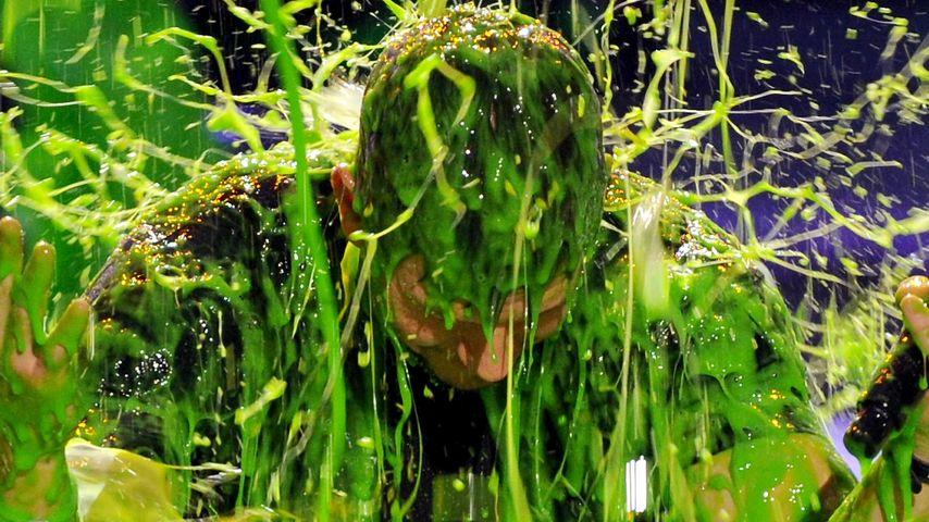 Igitt! Fiese Schleim-Dusche für Mark Wahlberg