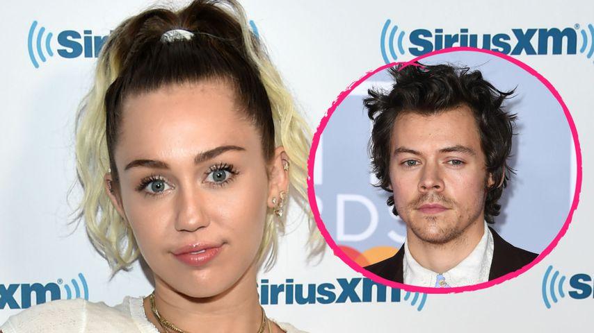 Ist Miley Cyrus jetzt etwa scharf auf Harry Styles?