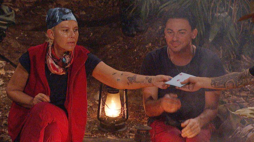 Per Post: Matthias bekommt im Dschungel einen Heiratsantrag!
