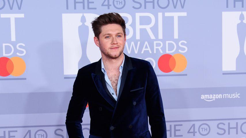 Sänger Niall Horan