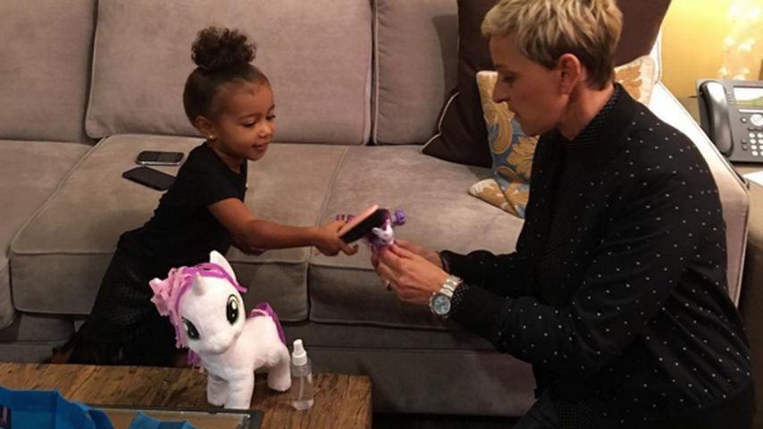 Neue Spielgefährtin: Nori verzaubert Ellen DeGeneres