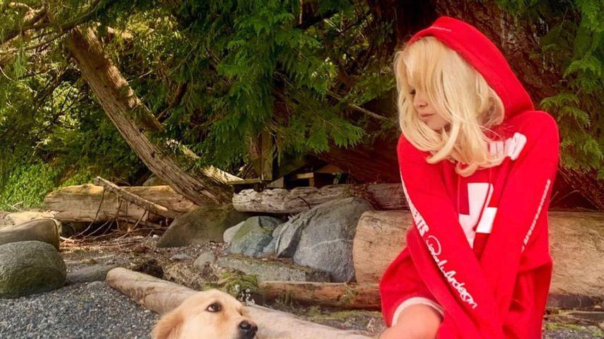 Pamela Anderson und ihr Hund auf Instagram, 2020