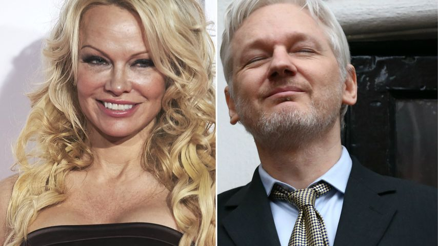 "Pam Anderson: ""Romantische Verbindung"" mit Julian Assange!"