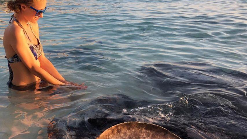Schräger Urlaubsluxus: Paris Hilton füttert Stachelrochen
