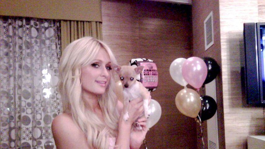 Paris Hilton: War sie nun eingeladen oder nicht?