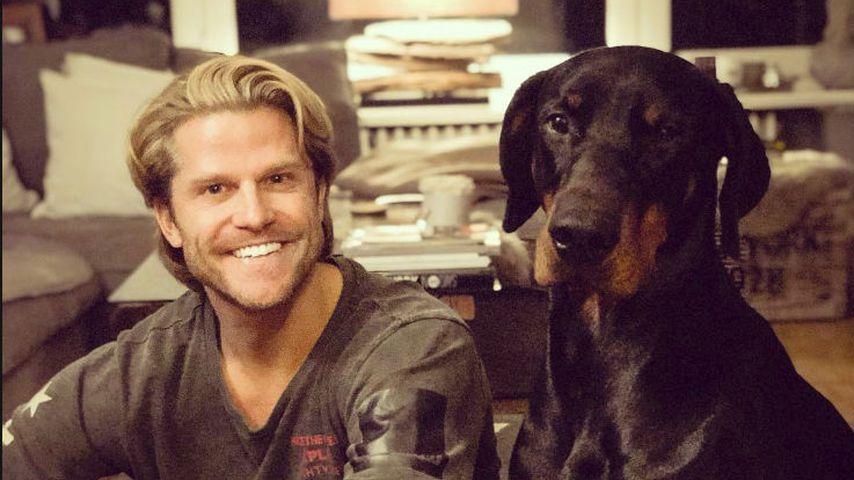 Jetzt Hunde-Papa? Paul Janke zeigt seinen tierischen Freund!