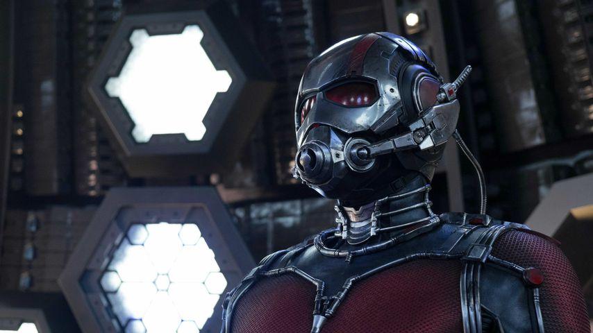 """Paul Rudd in """"Ant-Man"""""""