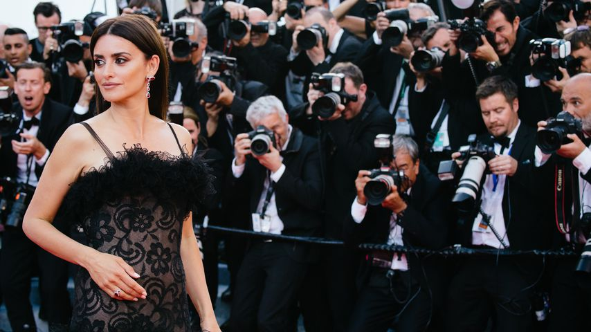 Filmfestival Cannes: Selfie-Verbot für Penelope Cruz & Co.