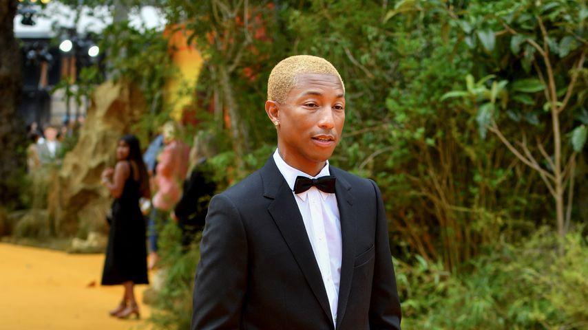 """Pharrell Williams bei der Premiere von """"König der Löwen"""""""