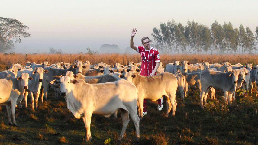 Auf Rinderfarm: Ex-Bayern-Star bietet Philipp Lahm Job an