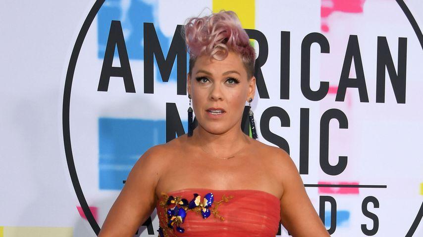 Abgekupfert: Ist die Video-Idee von Pinks Song etwa geklaut?