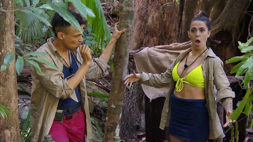 Prince Damien und Elena Miras an Tag zwölf im Dschungelcamp