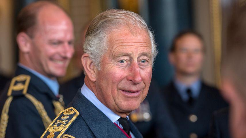 Prinz Charles beim 100-jährigen Jubiläum der Royal Air Force