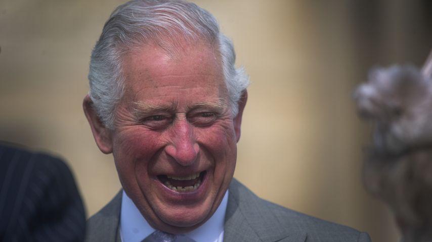 Prinz Charles betreibt jetzt eigene Pension in Schottland!