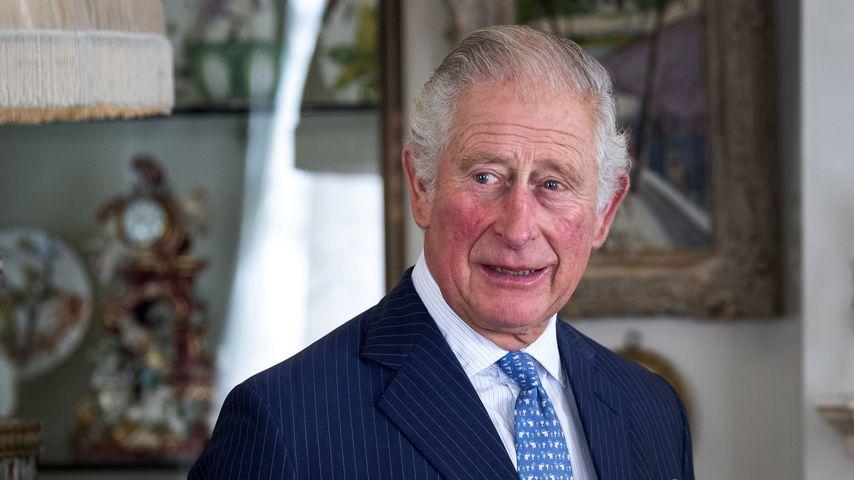 Prinz Charles, britischer Thronfolger