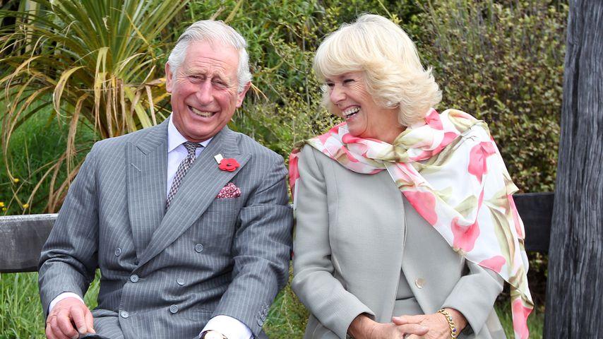 Prinz Charles und Herzogin Camilla im November 2015