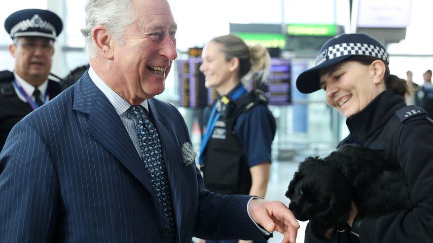 Sparsam! Prinz Charles lässt seine Anzüge immer flicken