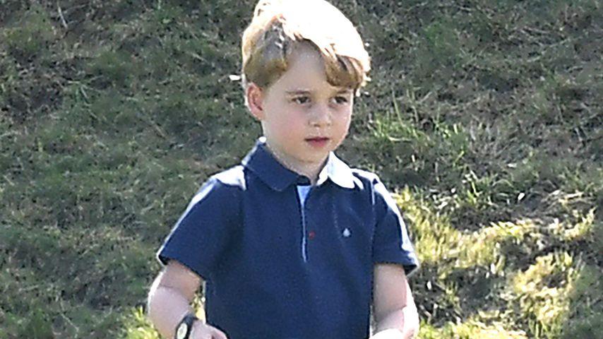 Prinz George weiß noch nicht, dass er König werden könnte