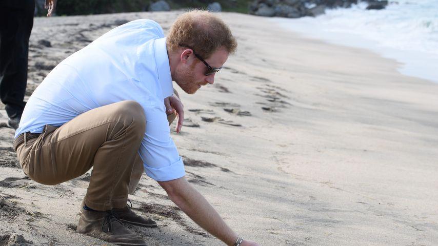 Prinz Harry am Lovers Beach in Cabo San Luca