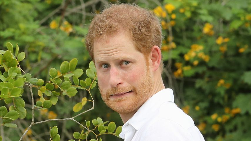 Prinz Harry bei seinem Karibik-Besuch in Antigua und Barbuda