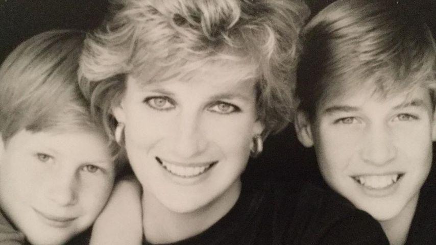 Prinz Harry, Prinzessin Diana und Prinz William