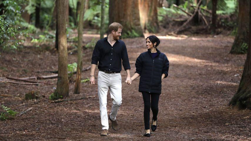 Prinz Harry und Herzogin Meghan auf dem Redwoods Treewalk in Rotorua
