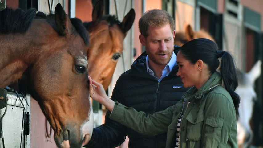 Prinz Harry und Herzogin Meghan bei ihrem Besuch in Marokko