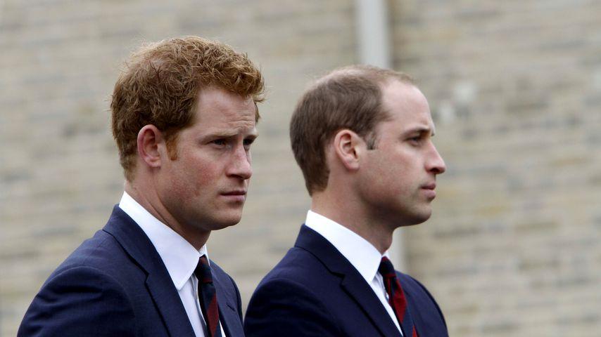 Prinz Harry und Prinz William bei einem Charity-Event in Tidworth