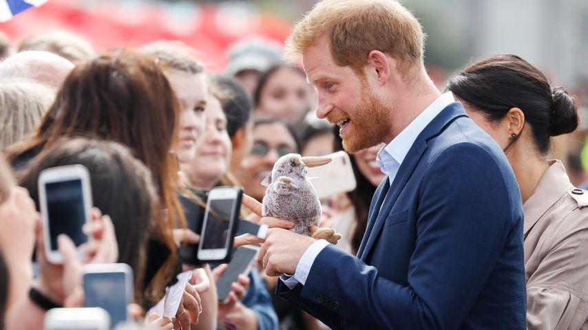 Gleiches Schicksal: Prinz Harry tröstet einen kleinen Jungen