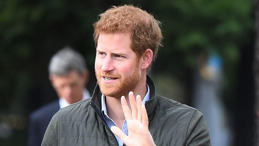 Prinz Harry bei einem Besuch in Sydney