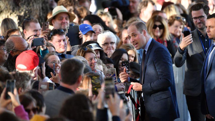 Prinz William bei seiner Reise durch Neuseeland