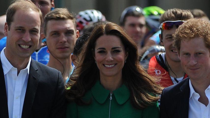 Ganz modern: Harry, William & Kate twittern jetzt