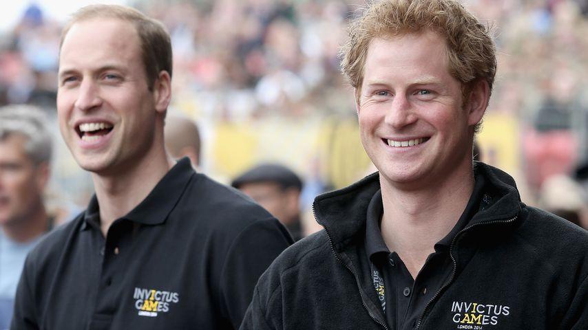 Verlobter Harry: Bruder William hat jetzt nur einen Wunsch!