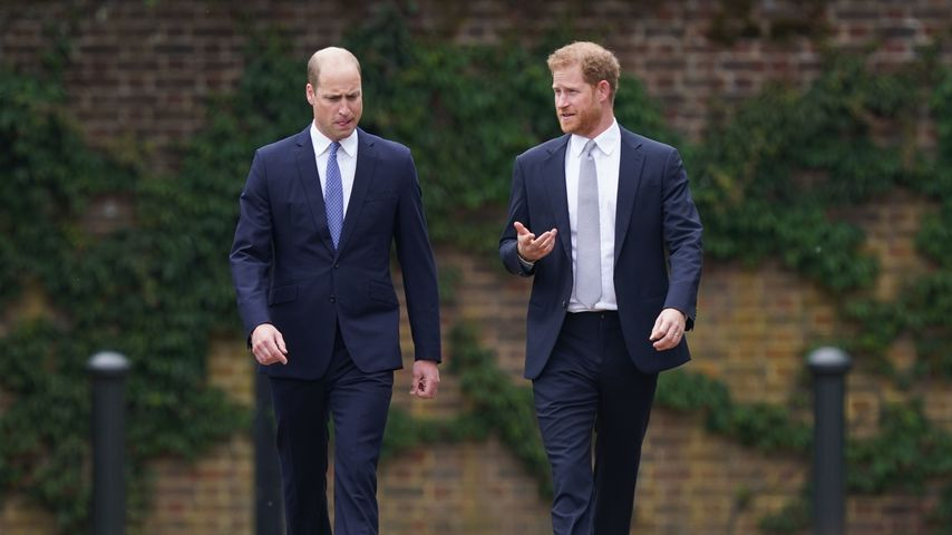 Prinz William und Prinz Harry, 2021