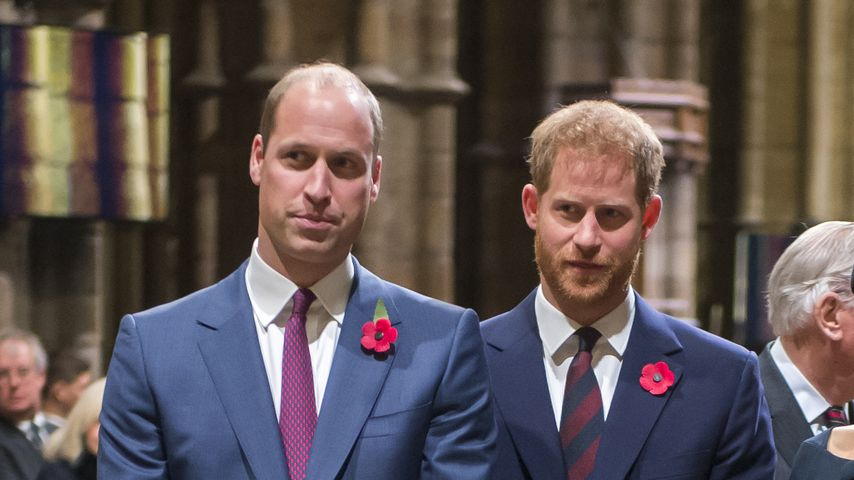 Prinz William und Prinz Harry im November 2018 in London