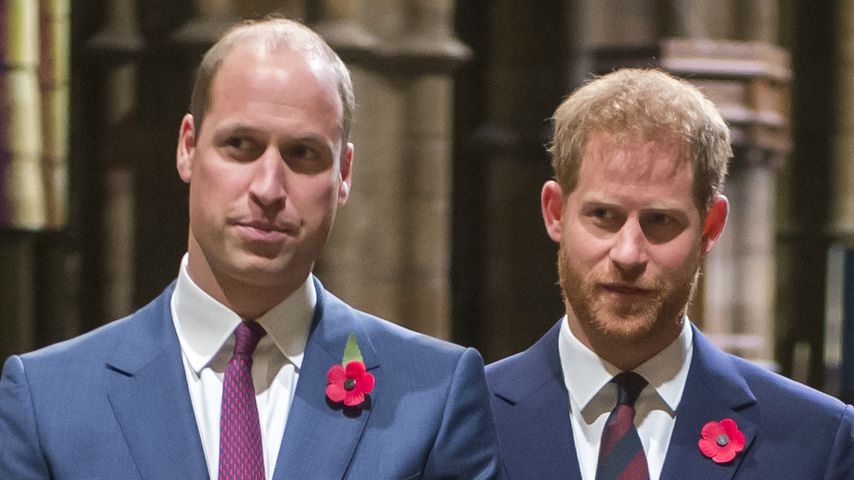 Prinz William und Prinz Harry im November 2018