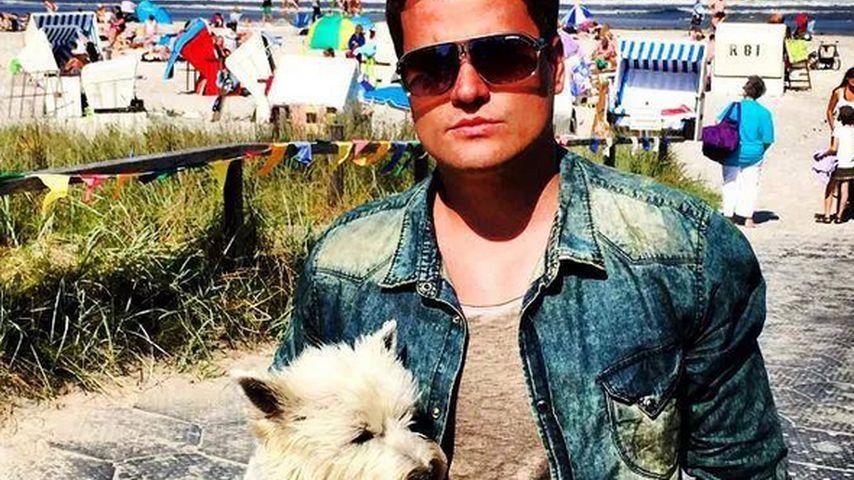 Zukunftstraum: Rocco Stark sucht Liebe fürs Leben