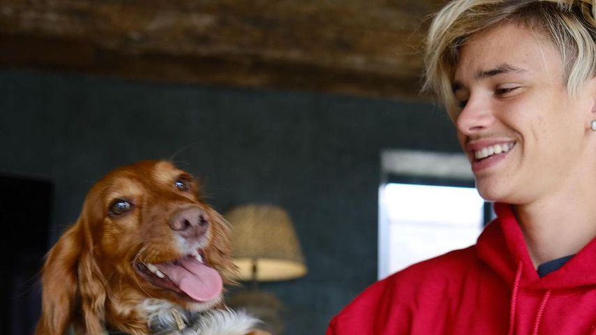 Beckham-Sprössling Romeo mit Familienhund Sage