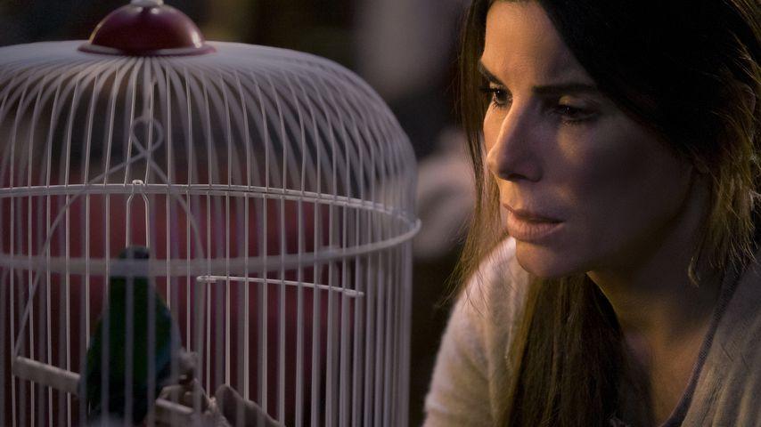 """Oscar-Preisträgerin Sandra Bullock in """"Bird Box"""""""