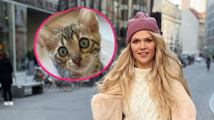 Tochter Matilda gebissen: Sara Kulka verteidigt ihre Katze